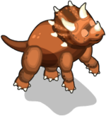 Triceratops an