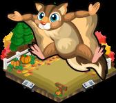 Pumpkin patch squirrel single