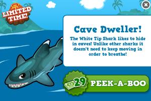 White tip shark modal