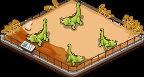 Jacksons chameleon family