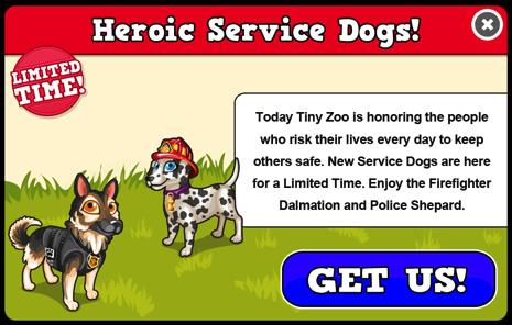 Service dogs modal