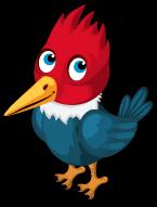 Woodpecker single