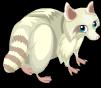 Albino raccoon static