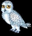 Arctic snowy owl static