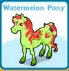 Watermelon pony card