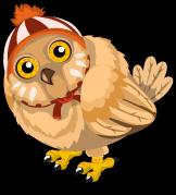 Winter Owl single