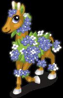 Hydrangea giraffe single