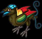 Wilsons bird of paradise single