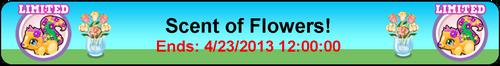 Goal cubby skunk flower title