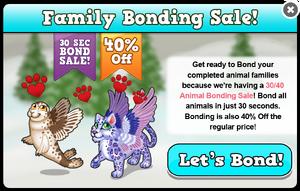 Winter wings bonding sale modal