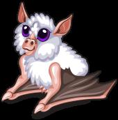 Honduran white bat new single