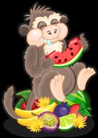 Lopburi monkey single
