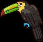 Toucan single
