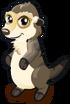 Meerkat single