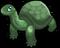 Galapagos Tortoise single