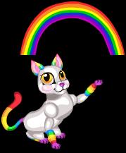 Rainbow cat an