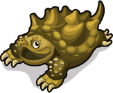 Snapping Turtle single