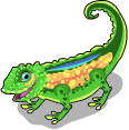 Leaf chameleon static