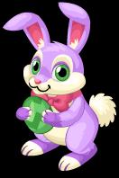 Zooster rabbit single