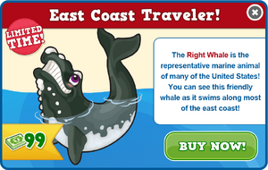 Right whale modal