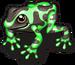 Poison arrow frog single