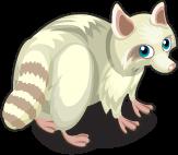 Albino Raccoon single