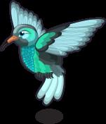 Hummingbird single