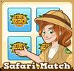 Store safari match