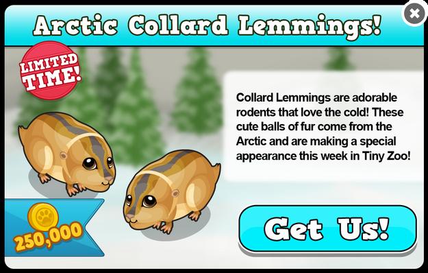 Arctic collard lemming modal