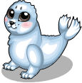 Arctic seal static