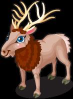 Rocky mountain elk single