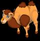 Bactrian Camel single