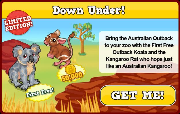 Outback koala modal