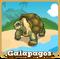 Store galapagos