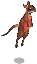 Swamp wallaby an