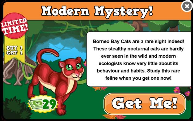 Borneo bay cat modal