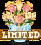 Limited flowers & gems