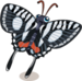 Zebra swallowtail butterfly single