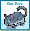 Blue degu card