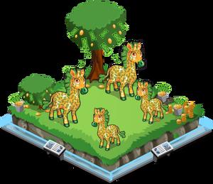 Bucks giraffe family