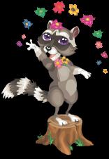 Fairy glen raccoon an