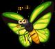 Green Goliath Butterfly single