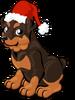 Santa rottweiler single