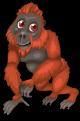 Borneo orangutan static