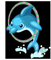 Circus Dolphin single