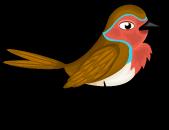 English robin single