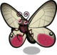 Pink Glasswing Butterfly single