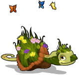 Earth turtle an