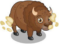 Plains buffalo an