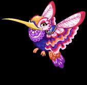 Folklorico hummingbird single